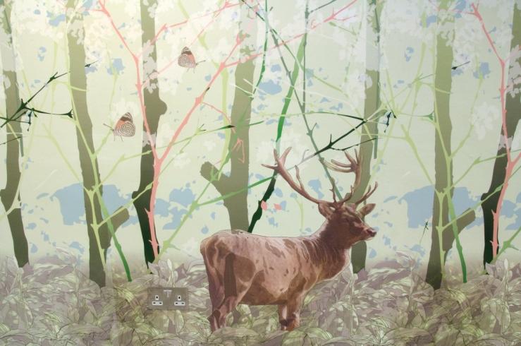 Juri_Nishi-forest_web
